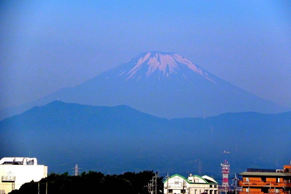 番外 カタログ#222・アカモズ/久しぶりに近所から富士山_b0024798_459525.jpg