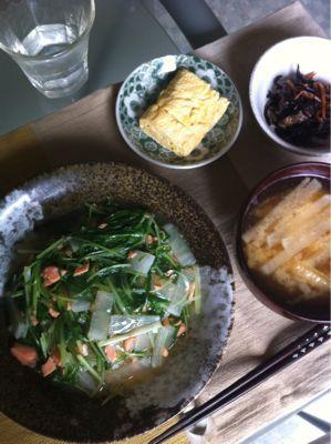 鮭と水菜のまかない丼_d0235108_1216878.jpg