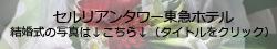 b0207030_1537678.jpg