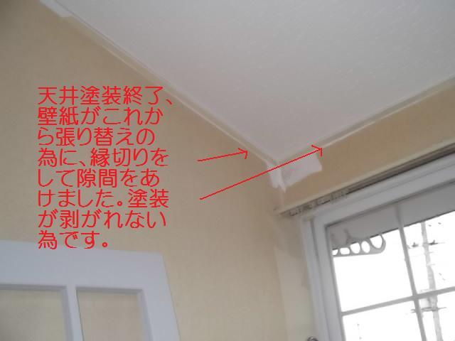 塗装仕上げ確認と1階トイレ塗装_c0186441_19552932.jpg