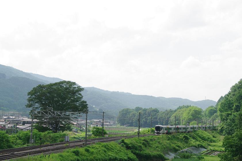 緑濃き中央本線_f0163491_1436130.jpg