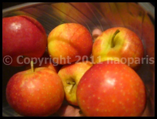 【リンゴ】1日1個のリンゴは医者知らずAn apple a day keeps the doctor away...._a0014299_20114640.jpg