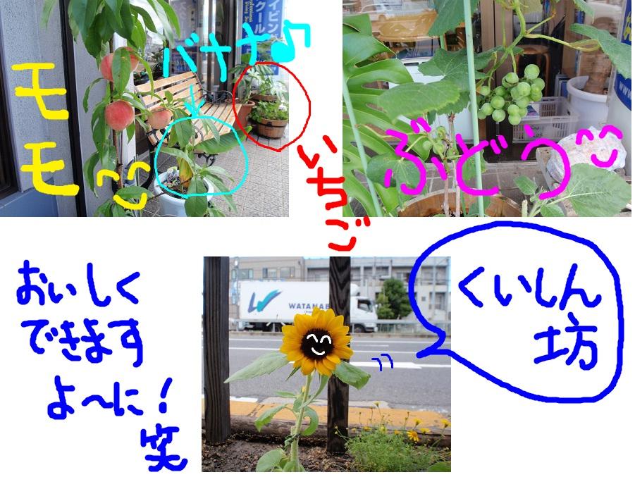 c0115421_15172013.jpg