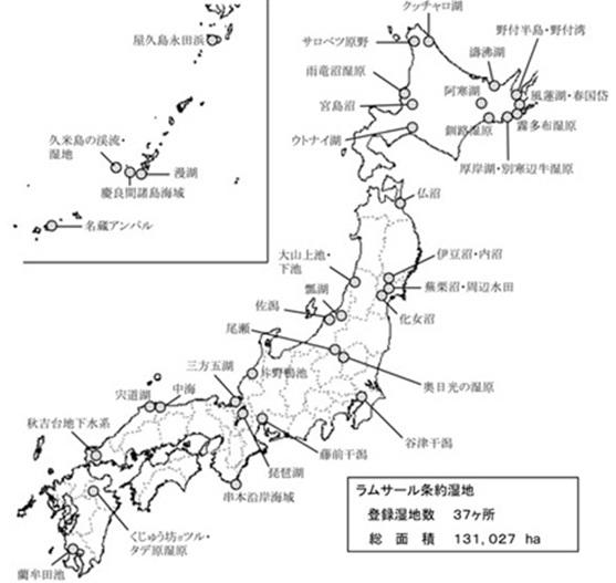 世界自然遺産とラムサール条約湿地(小笠原諸島)_e0223735_944825.jpg