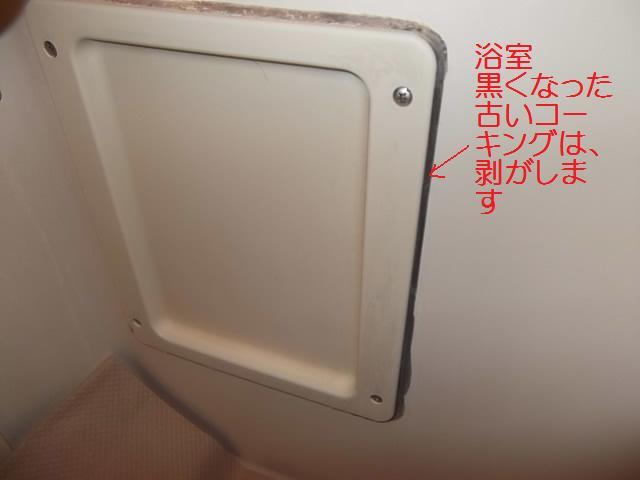 コーキング_c0186441_19274383.jpg