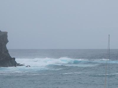 6月 25日 台風のあとのランチは。_b0158746_17341274.jpg