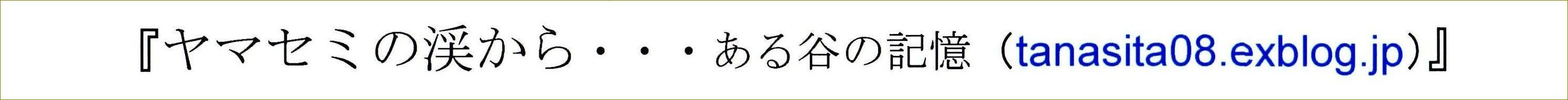 金子みすゞ_f0159856_7551061.jpg