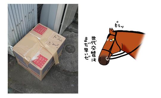 第52回宝塚記念_a0093189_15161169.jpg
