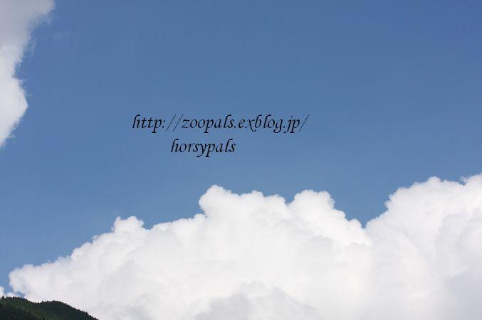 f0158697_22173821.jpg
