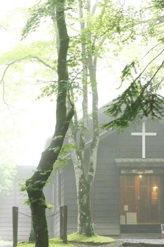 霧の日は_f0091207_11463559.jpg