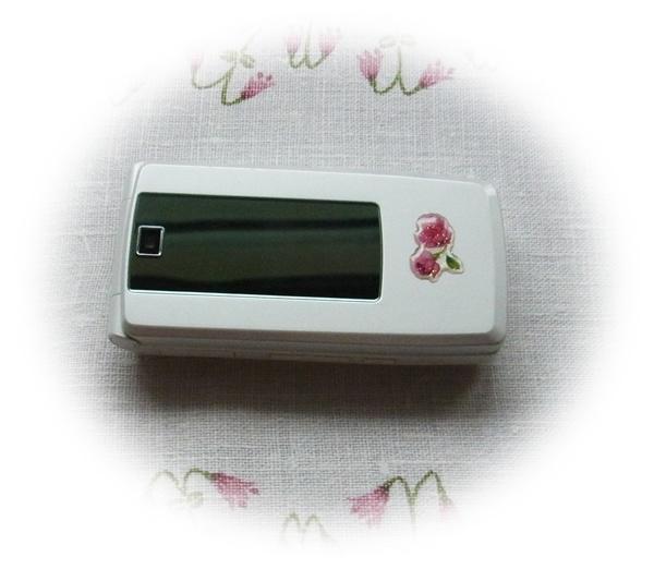 中古の携帯を貰った!_f0012718_17332986.jpg