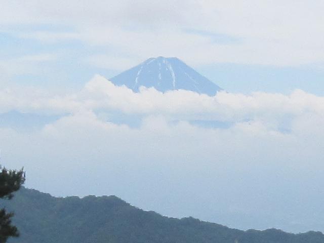 浮き富士だより_d0167225_1145555.jpg