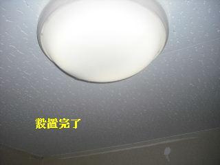 ボリューム満点_f0031037_1718428.jpg