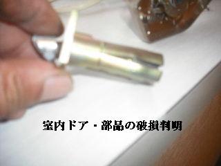 ボリューム満点_f0031037_17213356.jpg