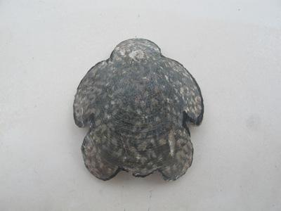 6月 26日  ナーマ浜で見つけたもの。_b0158746_21262438.jpg