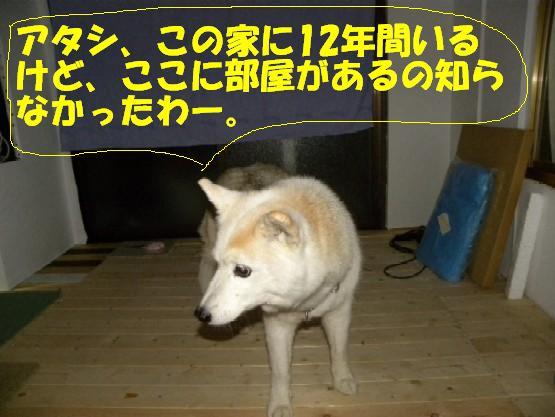 b0201756_12582280.jpg