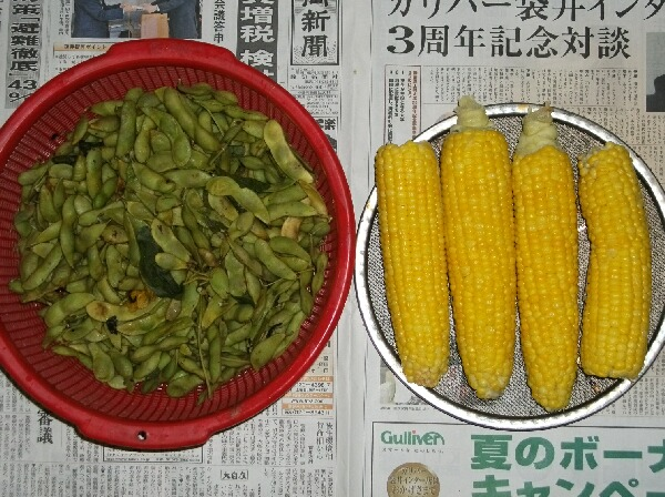 ためしてガッテン流トウモロコシと枝豆の茹で方_f0018078_19134372.jpg