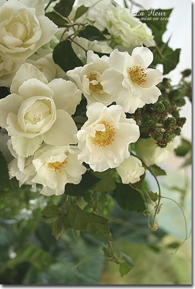 rose    ウエディングドレス_f0127281_045615.jpg