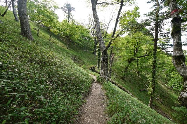 稲村ヶ岳・山上ヶ岳_e0214805_648438.jpg