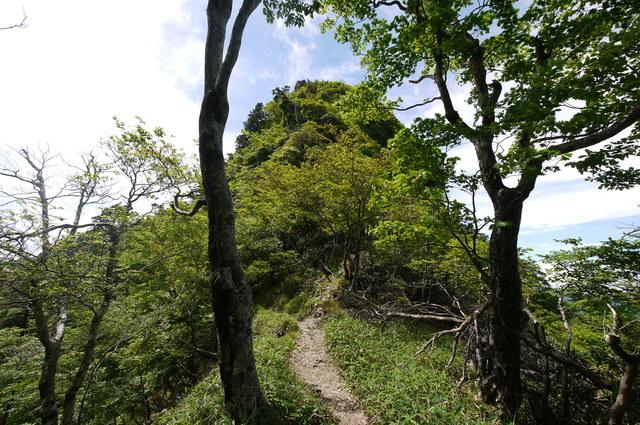 稲村ヶ岳・山上ヶ岳_e0214805_6491353.jpg