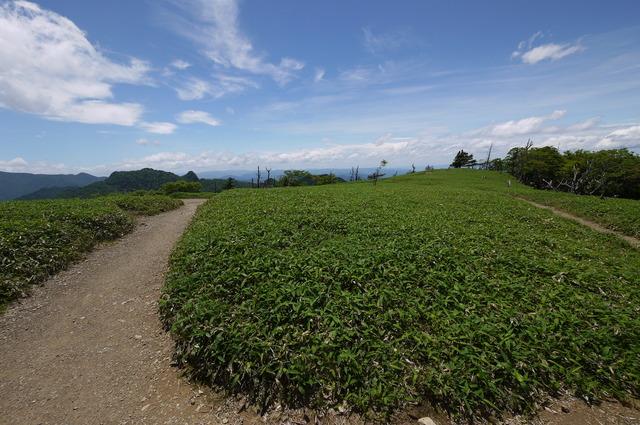 稲村ヶ岳・山上ヶ岳_e0214805_653894.jpg
