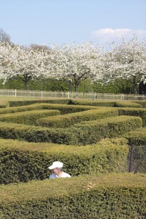 The Garden In Leeds Castle_e0138008_18584886.jpg