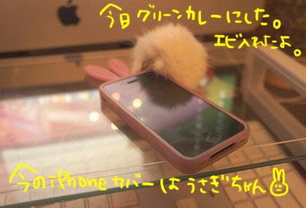 d0021510_1563940.jpg