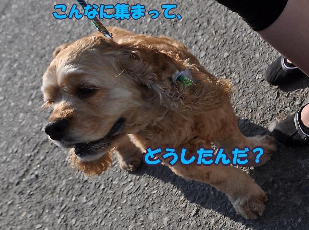 b0067012_2583222.jpg