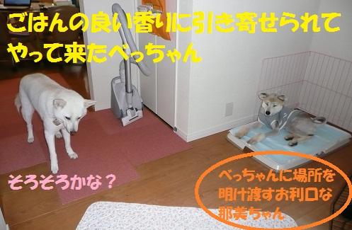 f0121712_15595369.jpg