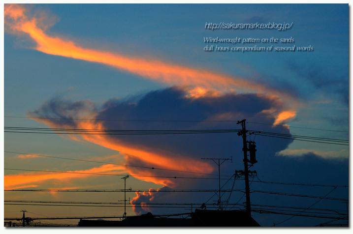 夕空に沸き立つ積乱雲。_f0235723_16151746.jpg