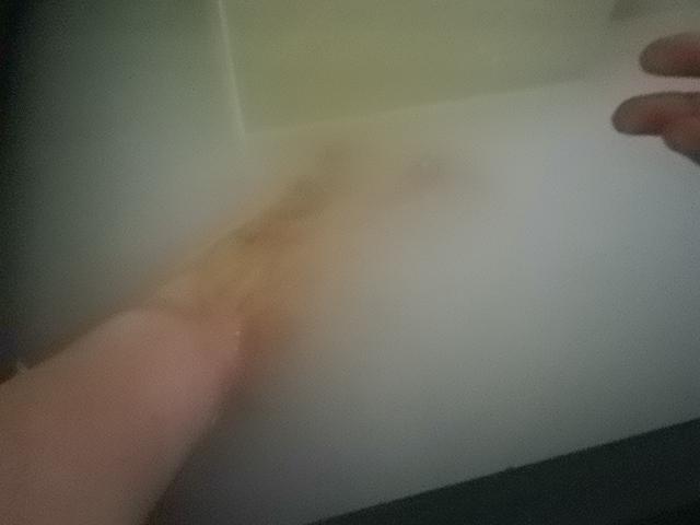プカプカお風呂~♪_f0234628_1453720.jpg
