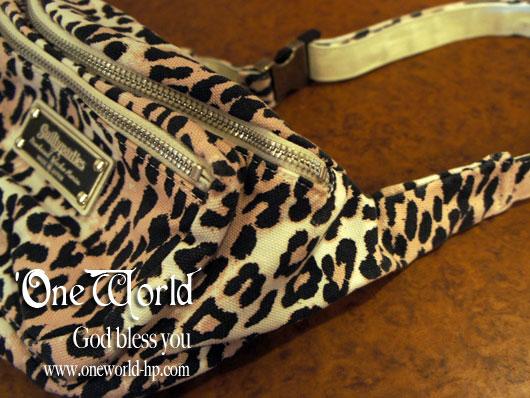 Leopard bag_a0155932_140882.jpg