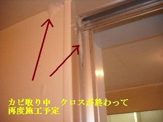 f0031037_2130445.jpg
