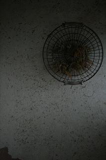 f0209362_8462585.jpg