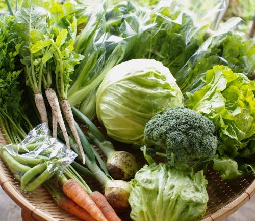 今週の野菜セット(6/28~7/2着)_c0110869_23543693.jpg