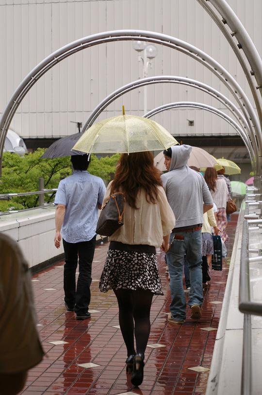 傘の華もまたいいね_e0082981_22341193.jpg
