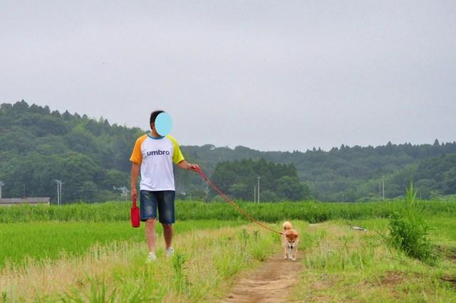 田んぼのど真ん中_a0126590_5225215.jpg