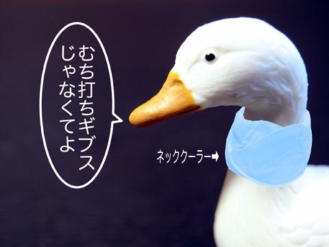 f0218891_921154.jpg