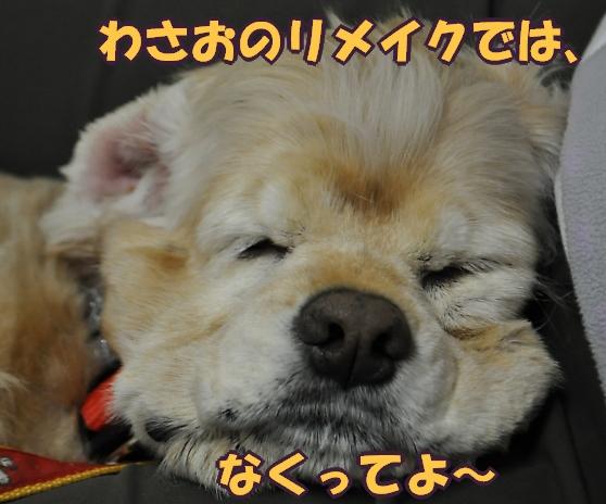 b0067012_2311107.jpg
