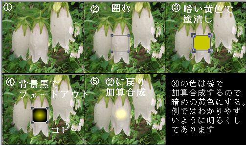 d0048312_2046519.jpg