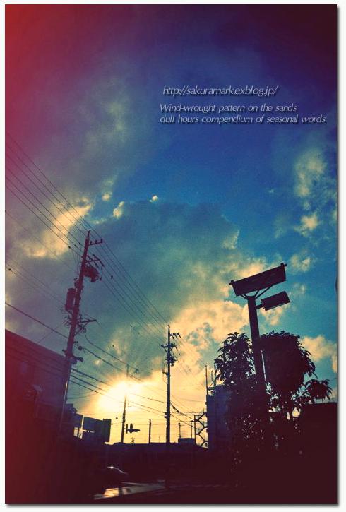 夏空の夕空に浮かぶ積雲。_f0235723_1851275.jpg