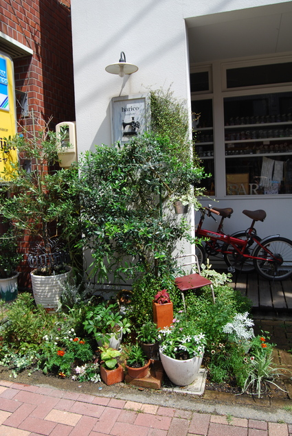 お花屋さん始めます!!_d0127925_1121961.jpg