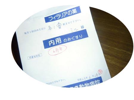 f0191932_22242788.jpg