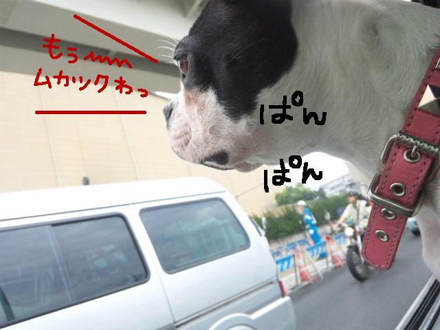 ジンマシンですって★_d0187891_18143626.jpg