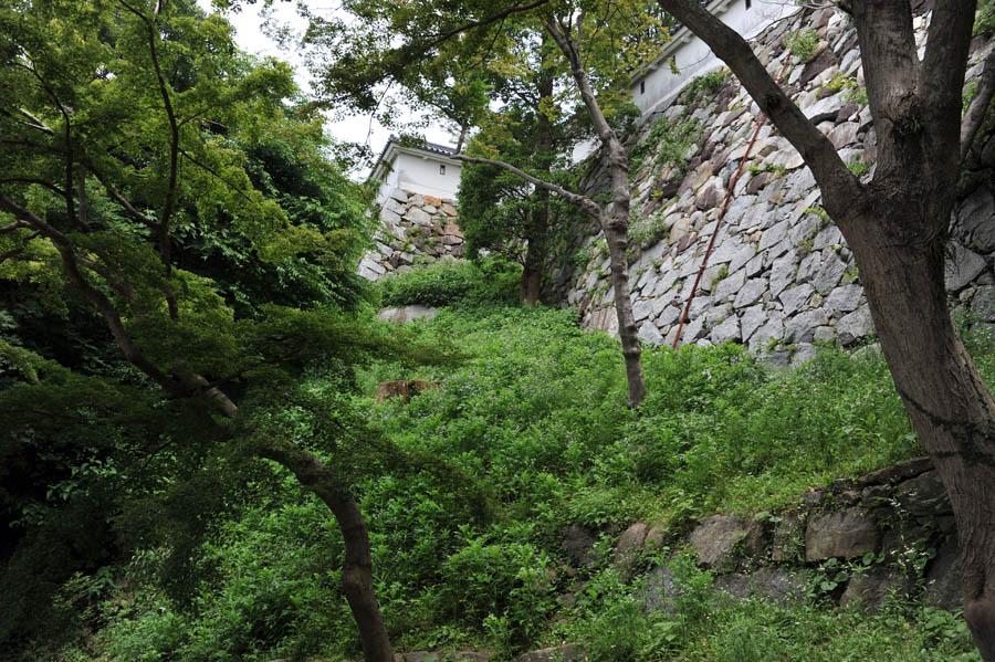 唐津城 (佐賀県)_a0042310_15293248.jpg