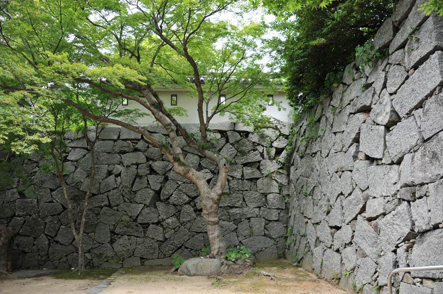 唐津城 (佐賀県)_a0042310_153122.jpg