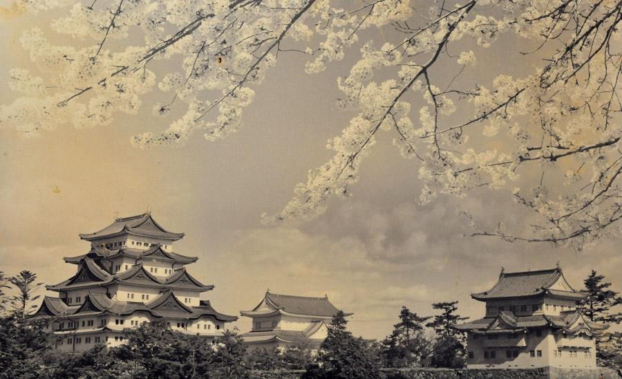 唐津城 (佐賀県)_a0042310_15595049.jpg