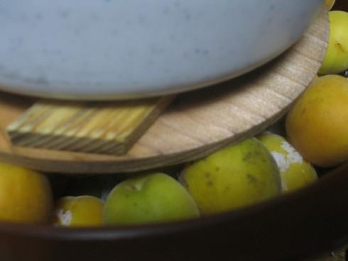 「完熟、梅の塩漬け」~_a0125419_1334374.jpg