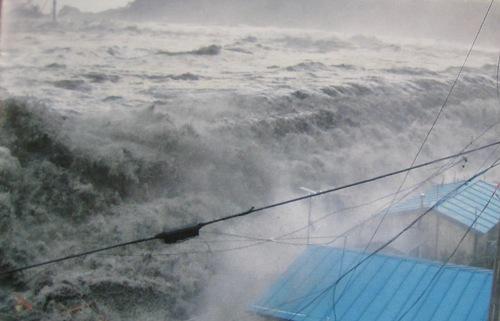 津波の映画に・・・・・・・・_b0115553_7282741.jpg
