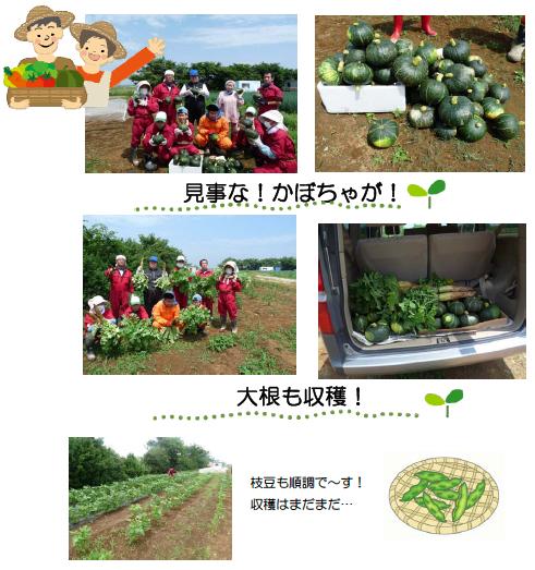 いもむし農園日記 その3_c0214657_1831474.jpg